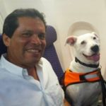 Photo of plane passenger sitting with Manolo, the flying dog, a happy white Pit Bull.