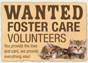 Foster care volunteers wanted poster.