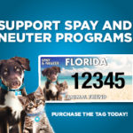 Support Spay and Neuter programs tag flyer.