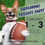 Superbowl tailgate party flyer featuring a chihuahua with a football.
