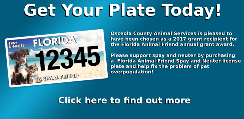 Get yor plate today! Click here to learn more.