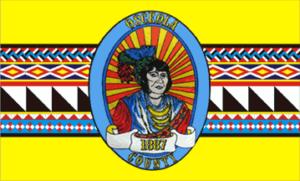 Osceola County flag.