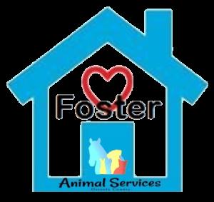 OCAS foster logo