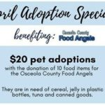 April adoption special flyer - $20.00 adoptions.