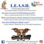 LEASH - Let every animal stay at home flyer.