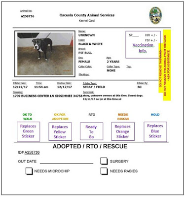 Photo of a shelter kennel card explaing animal's status.