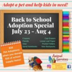 Back to school adoption special flyer.