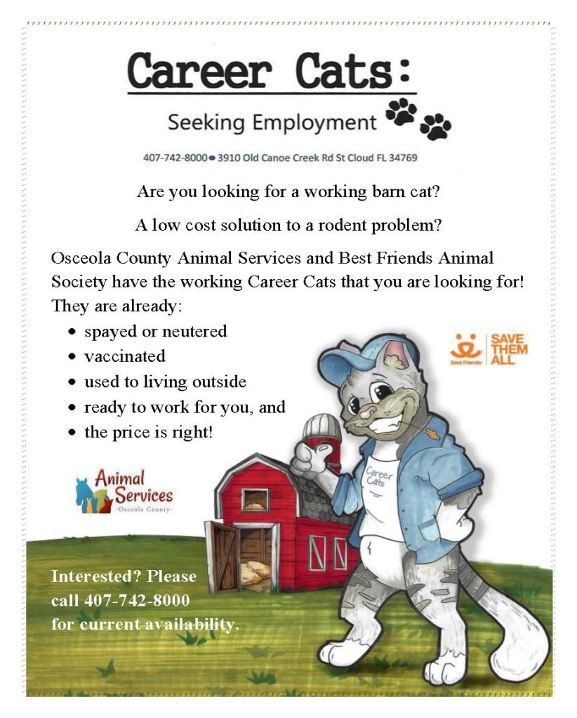 Career Cats Seeking Employment flyer - a low cost solution to a rodent problem.