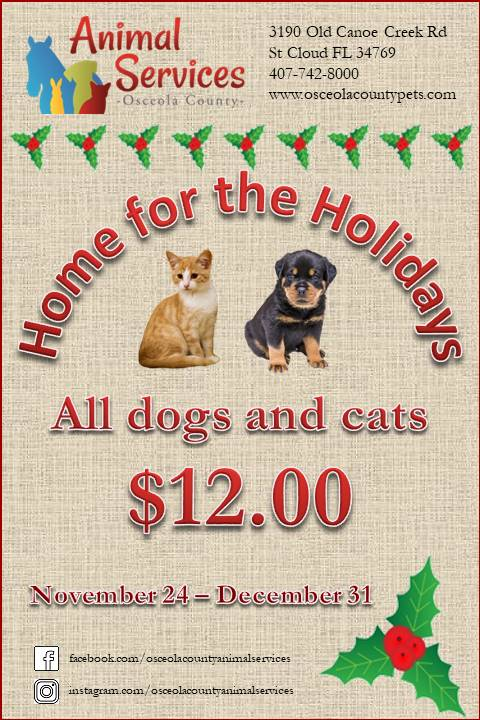 Home for the holidays flyer - all cats and dogs $12.00.
