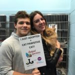 Cat Garfield is adopted!