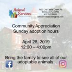 Sunday, April 28 Sunday adoption hours 12-4 poster