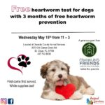 Free heartworm test and medication
