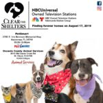 Clear the shelters poster