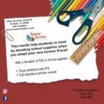July 2019 adoption special flyer