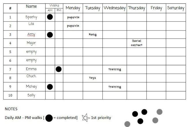 Daily dog care schedule board