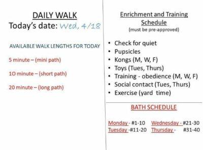 Schedule board details
