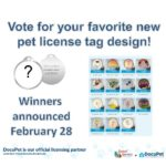 New license tag designs...