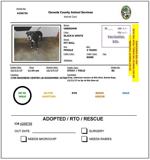 Kennel card