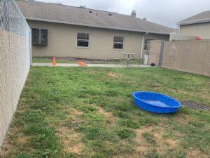Dog play yard - pool