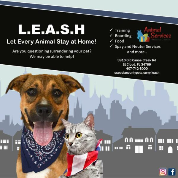 LEASH page poster